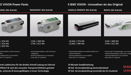 Flyer E-Bike Vision Ersatzakku