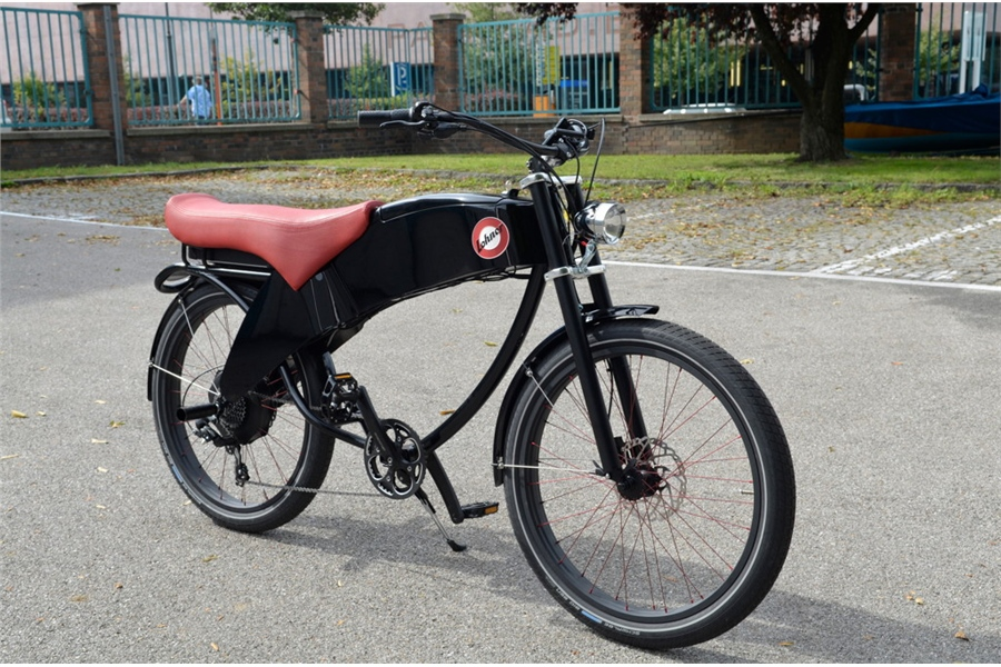 Lohner Stroler E-Bike