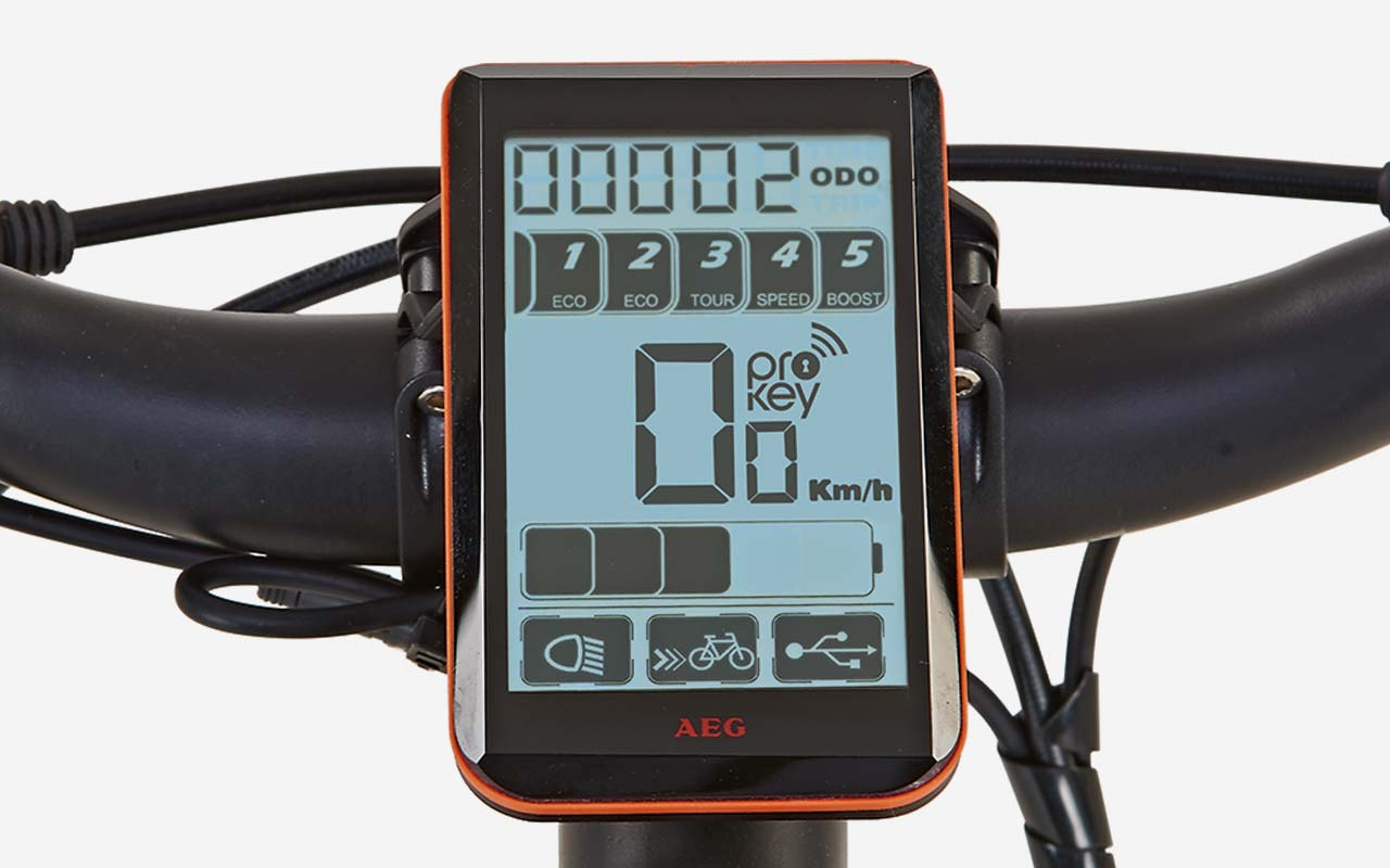 AEG LCD eBike-Display